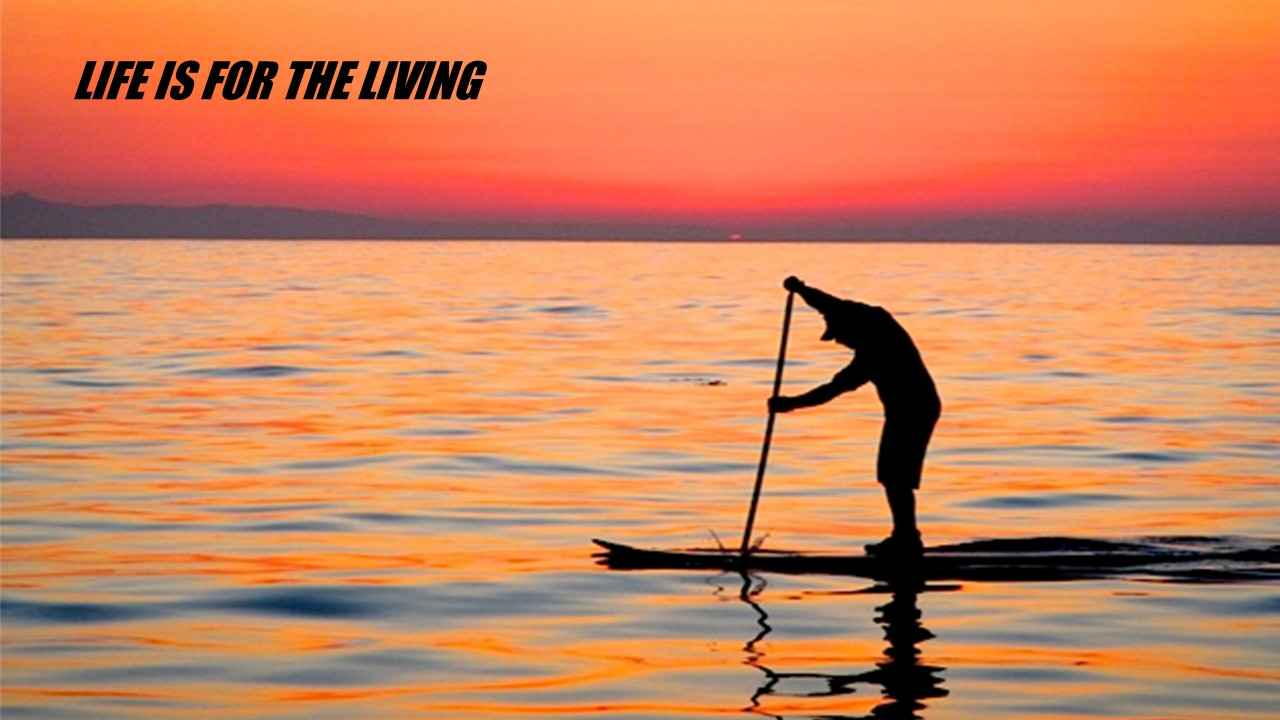 sup-life-t4.jpg